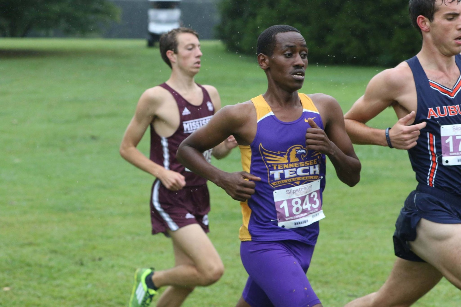 Men's cross country at 12th in latest USTFCCCA South Region rankings