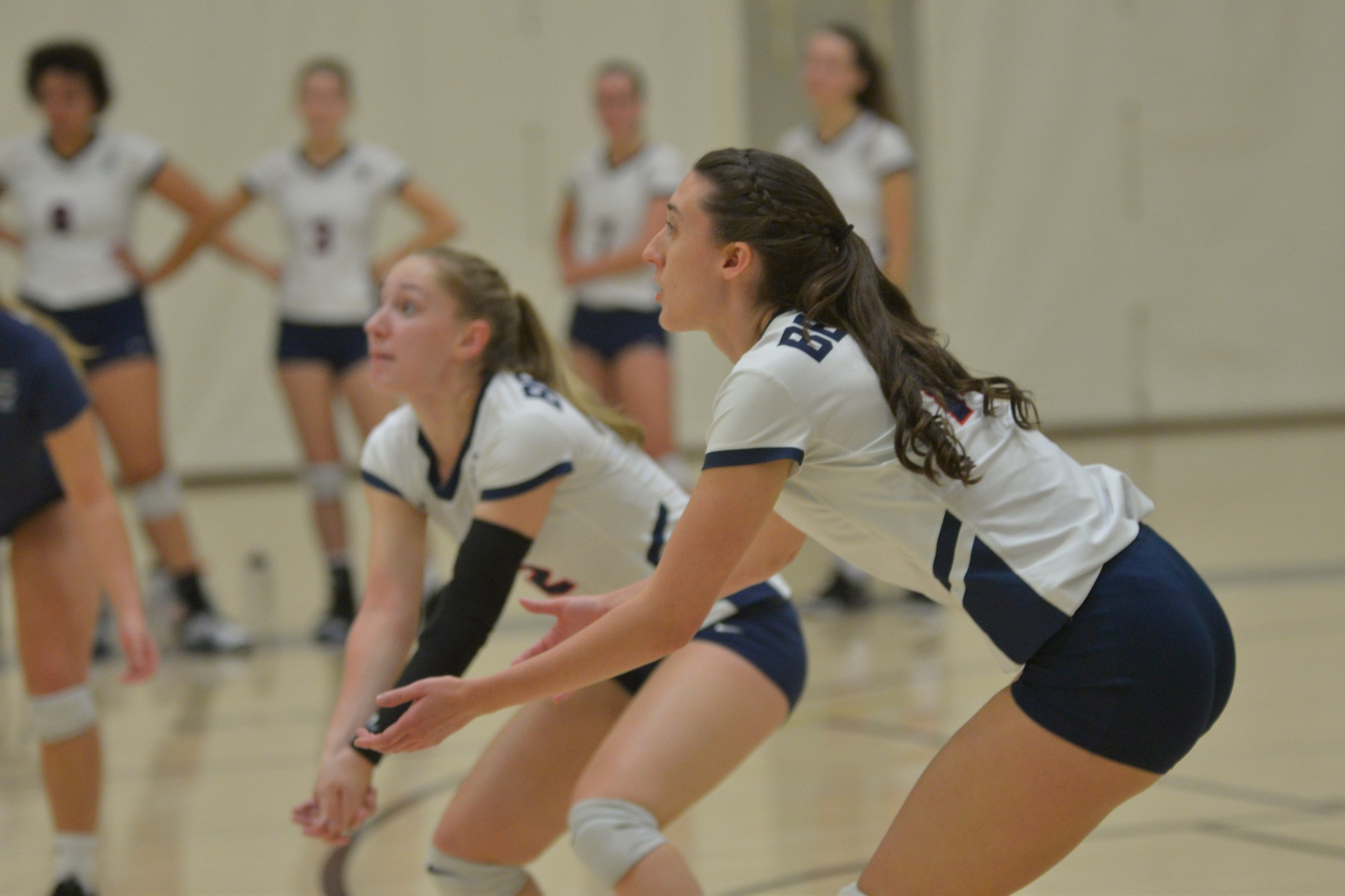 Women's Volleyball Splits at Lycoming Tip-Off Classic