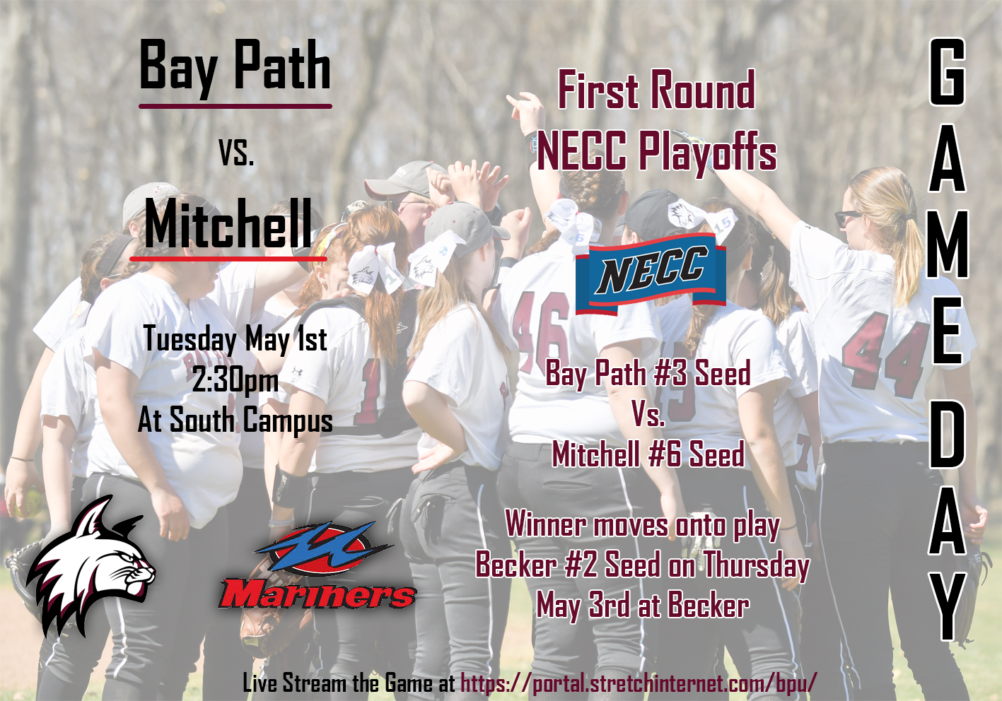 """Wildcats"" earn #3 seed in NECC Softball Tournament"