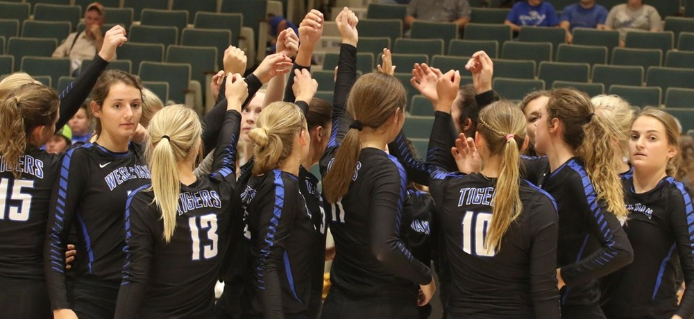 DWU volleyball drops contest to Briar Cliff