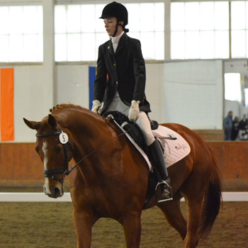 Dressage Wins 2013 IDA National Championship!!!