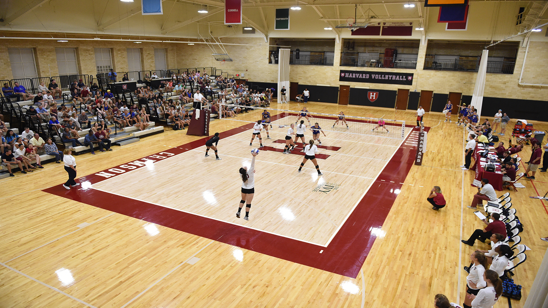 Malkin Athletic Center Volleyball