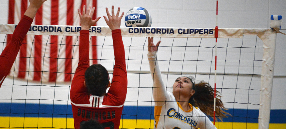 Women's Volleyball Drops 3-0 CACC Match at Jefferson