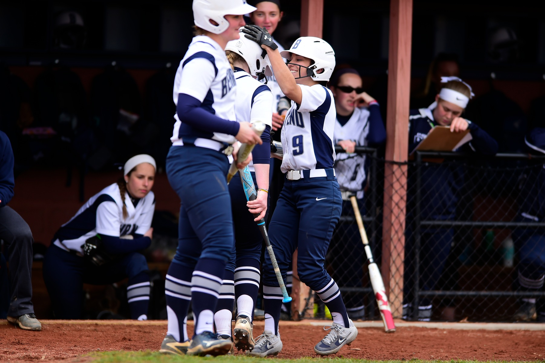 Softball Earns ECAC Tournament Bid; Lions Host Championship Weekend