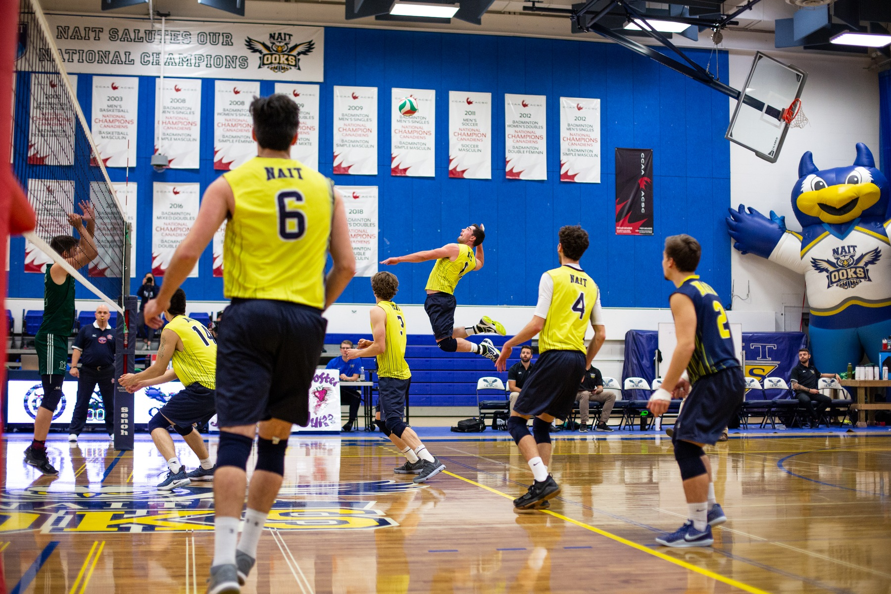 Ooks MVB Sweep Wolves