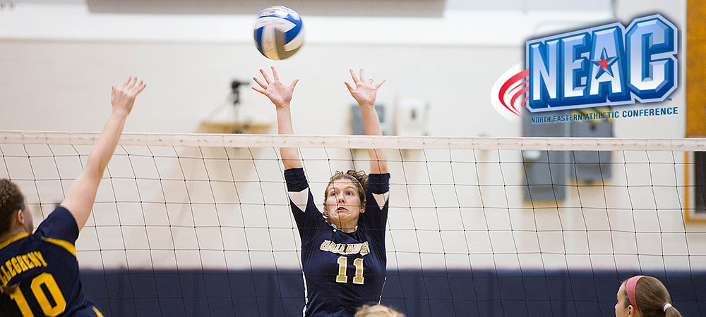 Julia Wolff named NEAC Women's Volleyball Defensive Player of the Week