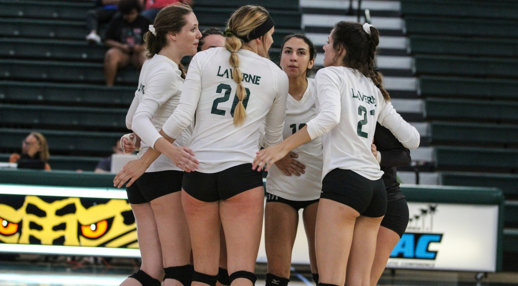 Volleyball edged by Chapman