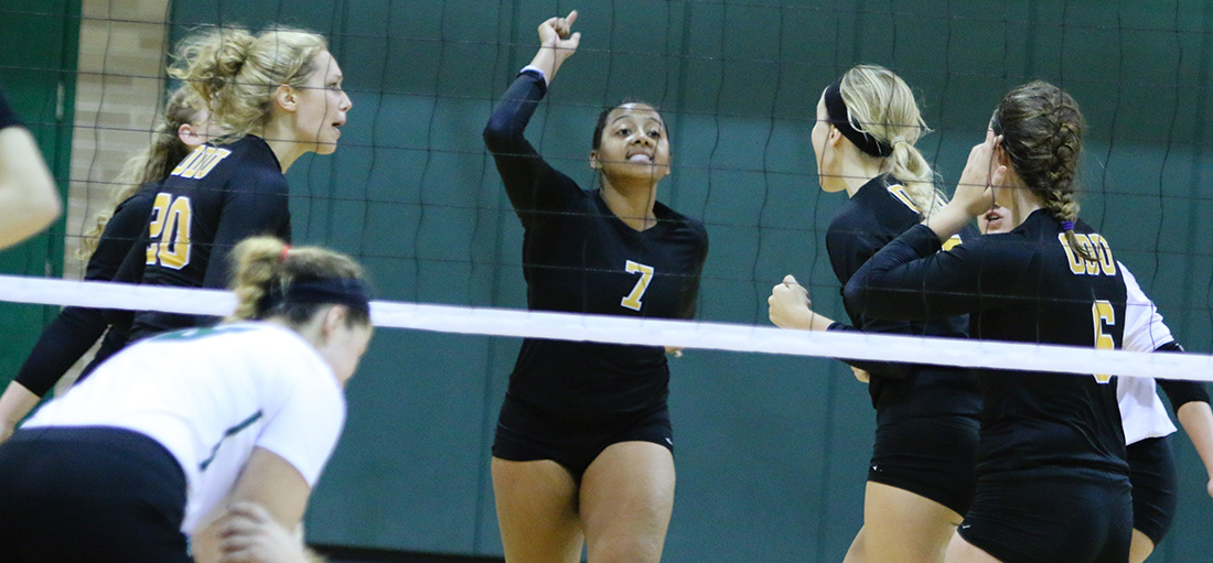 Volleyball Takes Down Arrows In Four