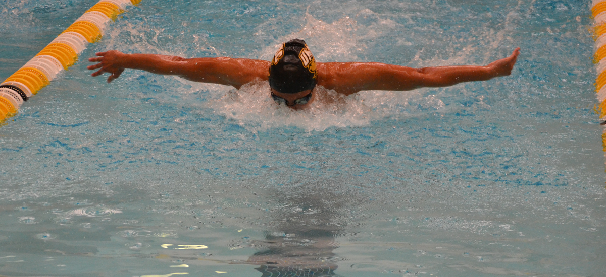 Swimming and Diving Returns to the Pool Against Old Dominion on Saturday