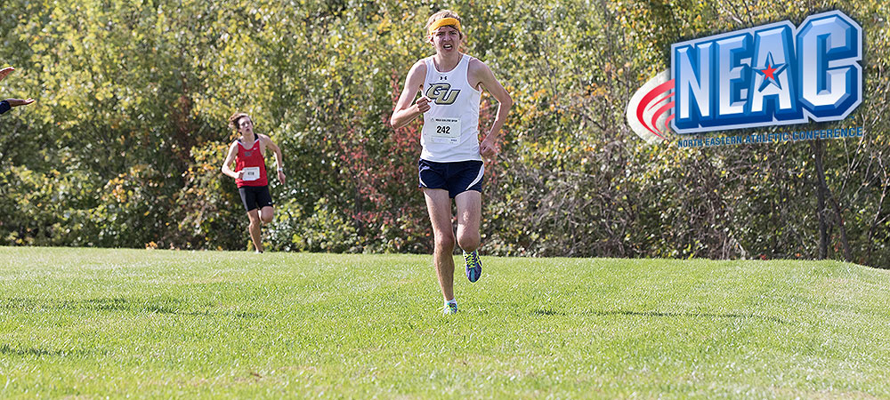 Kingstedt picks up sixth NEAC Men's Cross Country Runner of the Week honor