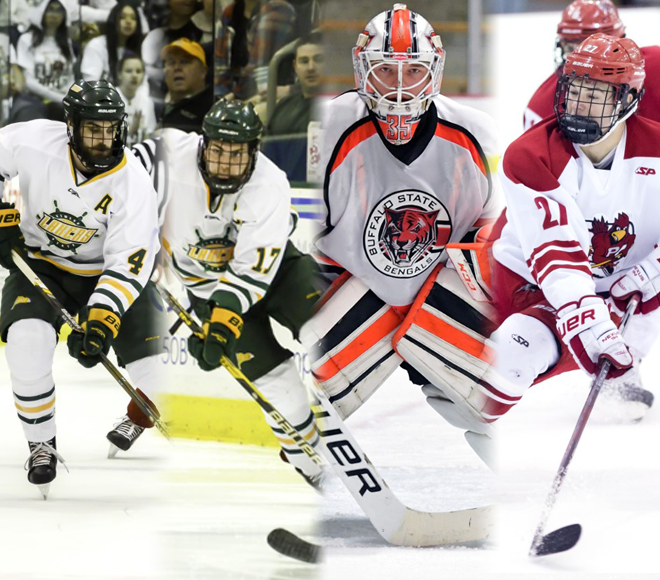 SUNYC announces men's ice hockey top awards