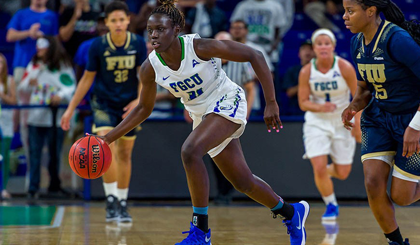 Smesko Captures 500th, FGCU Routs American 90-71 in Rainbow Wahine Finale
