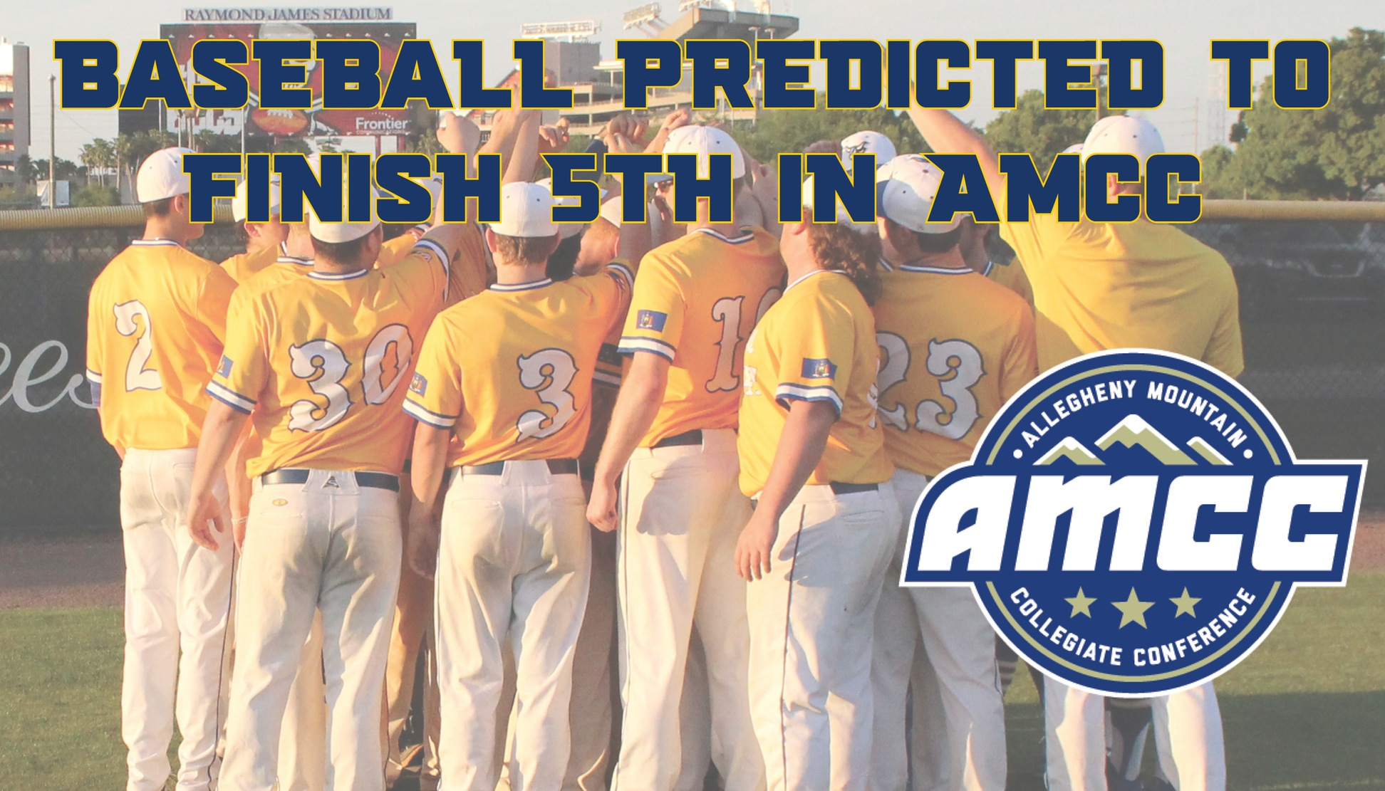 Baseball team predicted to finish 5th in AMCC