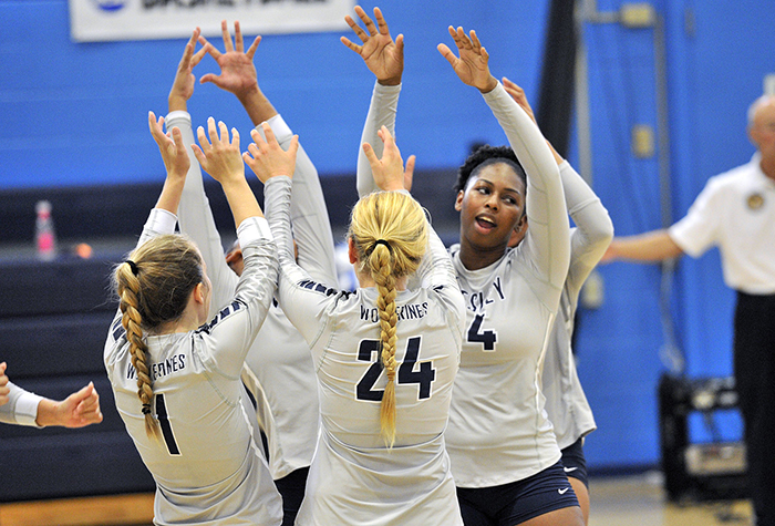 PREVIEW: A mix of youth and experience on the court for Wesley Volleyball
