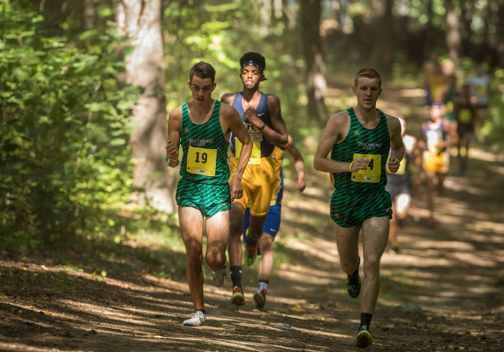 Falcons Shine At NCAA DIII NE Regional Championships