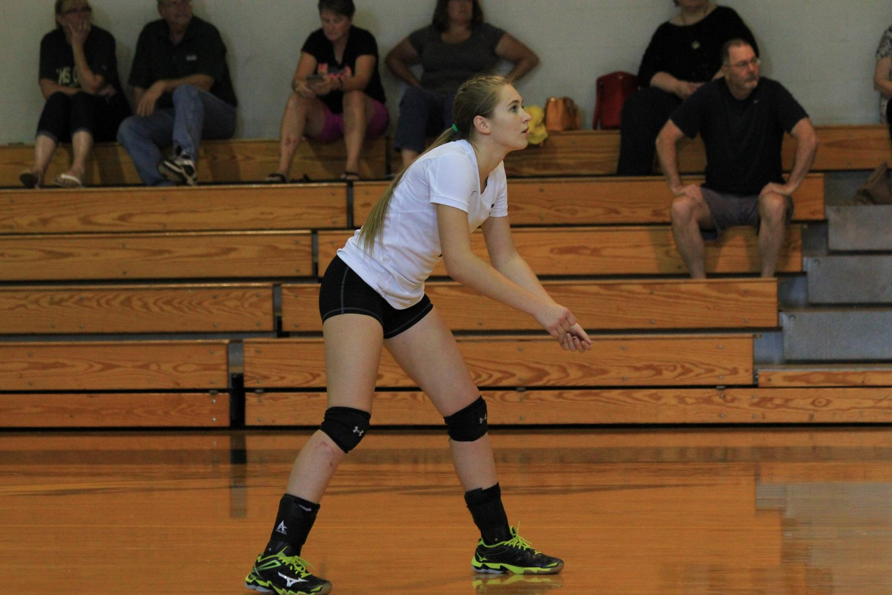 Western New England Sweeps Women's Volleyball