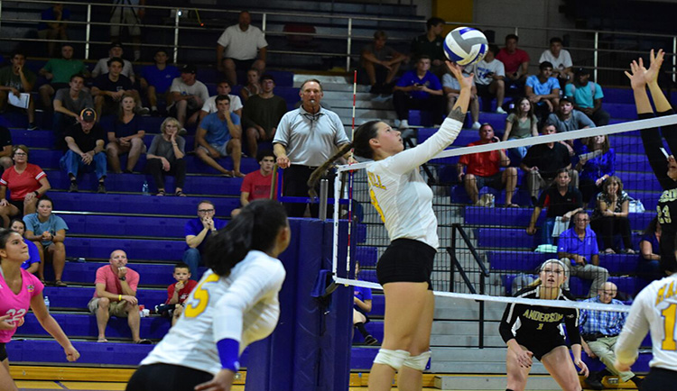 Johnson sets career-highs in match versus Catawba