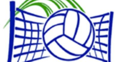 Lady Gators Drop Pair of Volleyball Matches to South Effingham