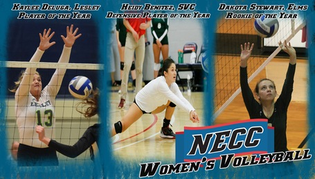 NECC Releases 2017 Women's Volleyball All-Conference Teams