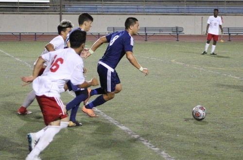 Owls Fly High In 3-1 Win Over Palomar