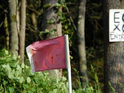 Flag that is on the cross country course