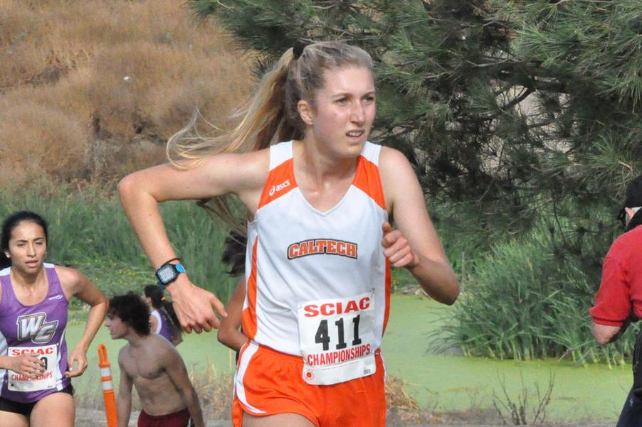 Cross Country Earns Academic Accolades