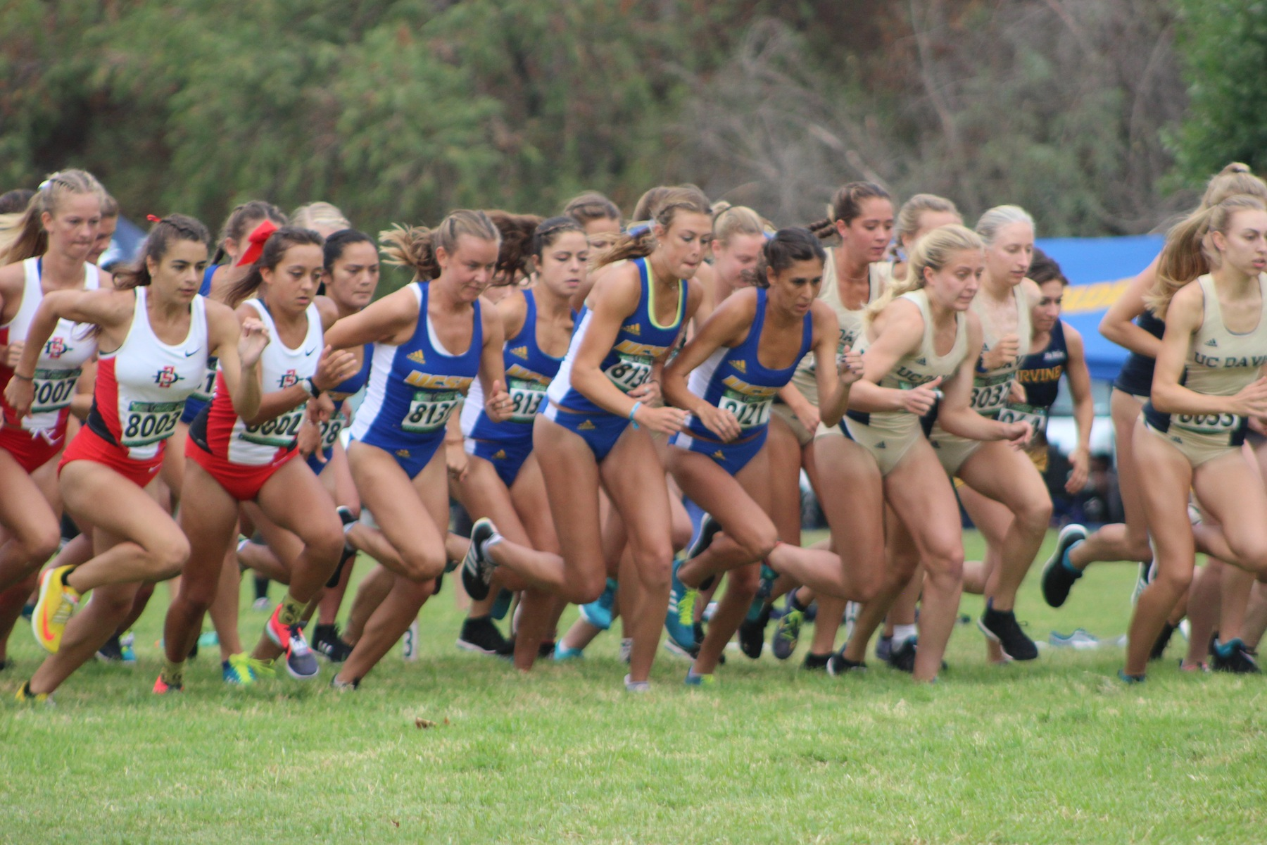 Gauchos Face Cal Poly and Cal State Fullerton at Home