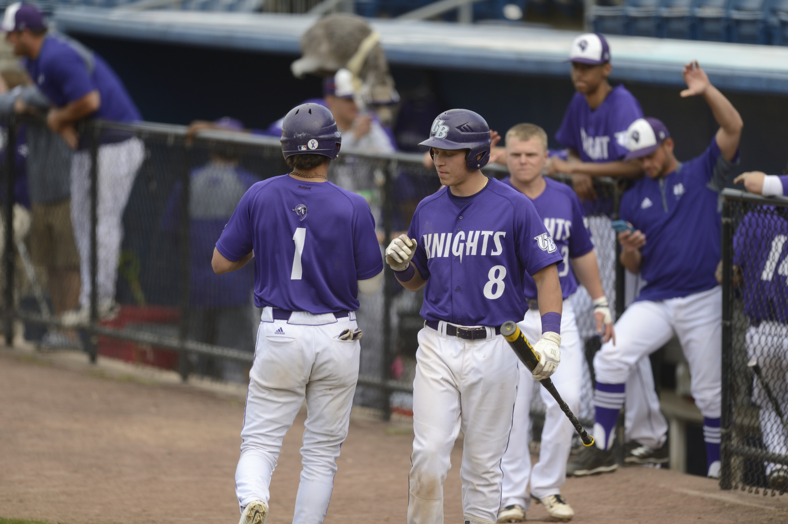 Purple Knights Move To 7-11 In ECC Baseball Play With Saturday Sweep Over Queens (N.Y.) College