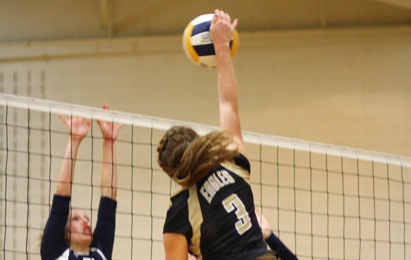 Lady Eagle's Volleyball Falls in Championship Match