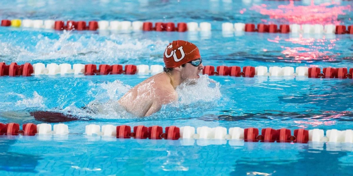 Swimming and Diving Teams Fall at Brandeis