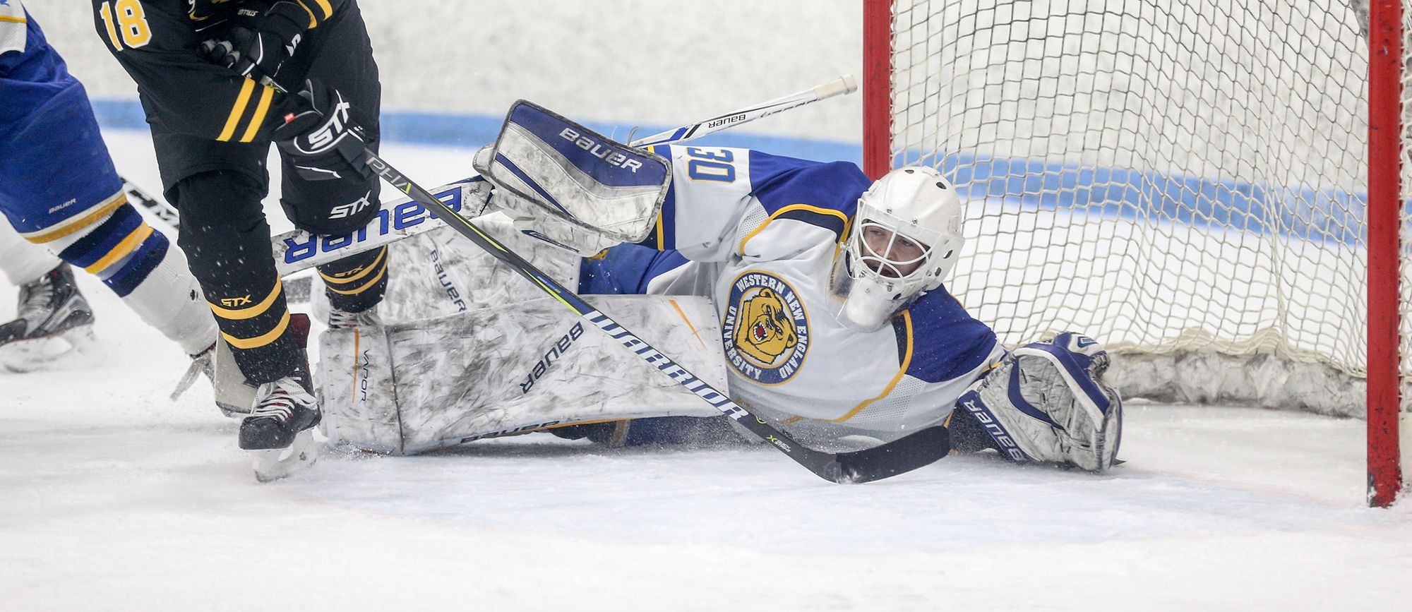 Baylee Johns made 22 saves in Western New England's 4-0 loss to Nichols on Saturday. (Photo by Chris Marion)