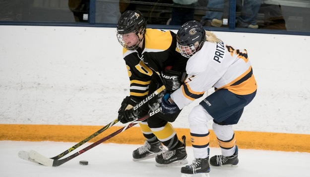 Blugolds skate to tie with Superior