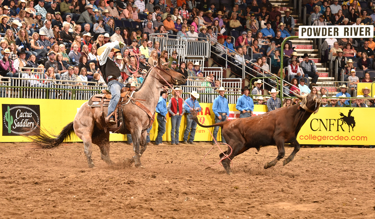 EMCC trio set to make return appearance at College National FinalsRodeo in Wyoming