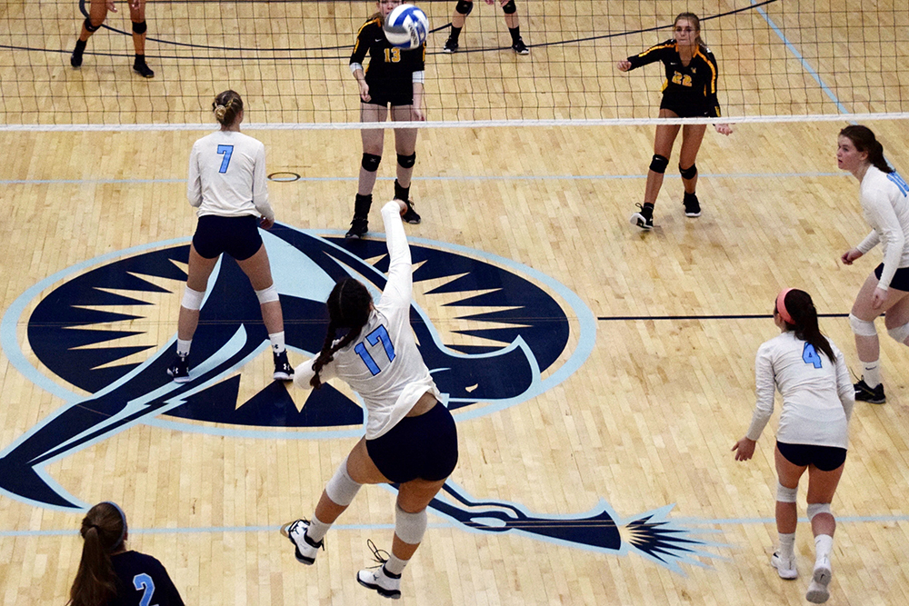 Wentworth pulls out win over Lasell Women's Volleyball