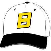 Barstow Vikings Hat with Logo