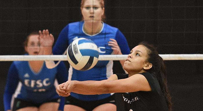 With 83 assists in two matches, Cristina Castillo earned Setter of the Week honors. (Photo by Tom Hagerty, Polk State.)