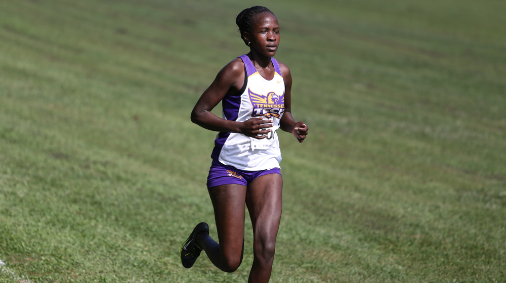 Tennessee Tech women's cross country to compete at OVC Championships on Saturday