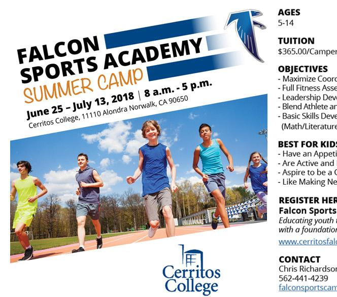 Falcon Sports Academy Summer Camp