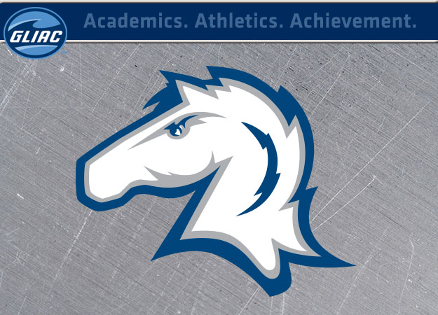 Hillsdale Athletics Earns NCAA Presidents' Award for Academic Excellence