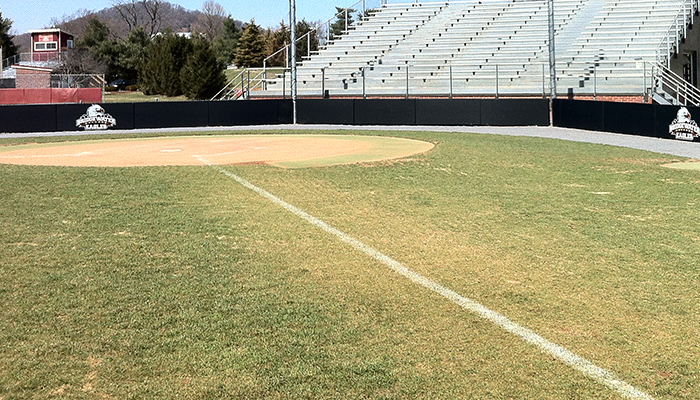 picture of baseball infield
