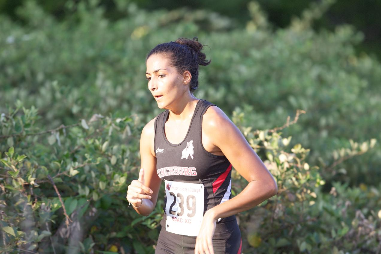 LC Cross Country Competes at Furman