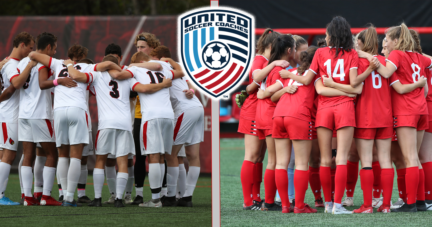 Cardinals Garner United Soccer Coaches Academic Awards
