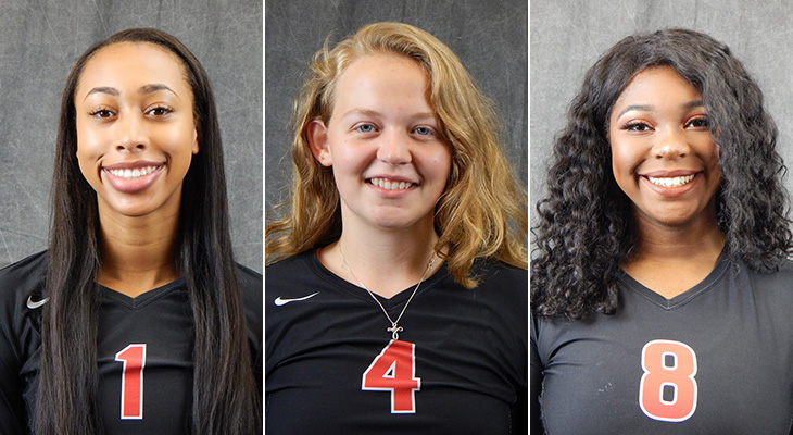 All-Conference Honors For Wells Women's Volleyball
