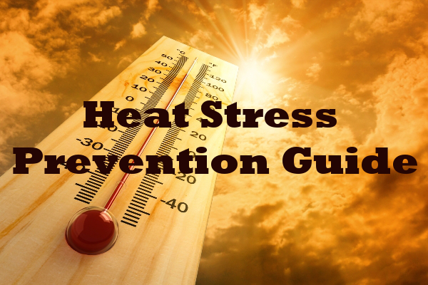 Digital Guide to Heat Stress Prevention