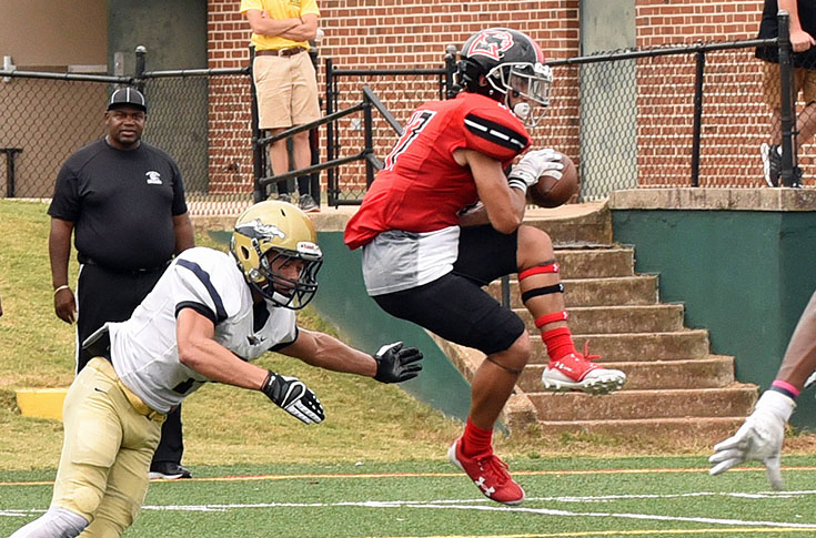 Football: Connor Blair leads Panthers to wild USA South win over N.C. Wesleyan