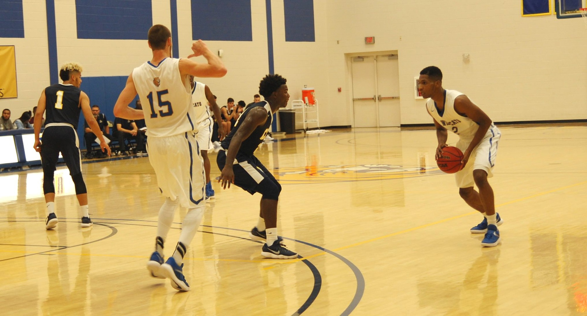 Poole Scores 17 for JWU in 90-54 Loss at High Point