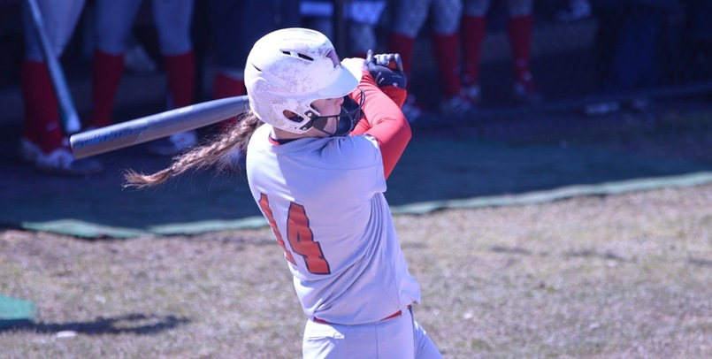 SVSU splits at Wayne State after game two victory