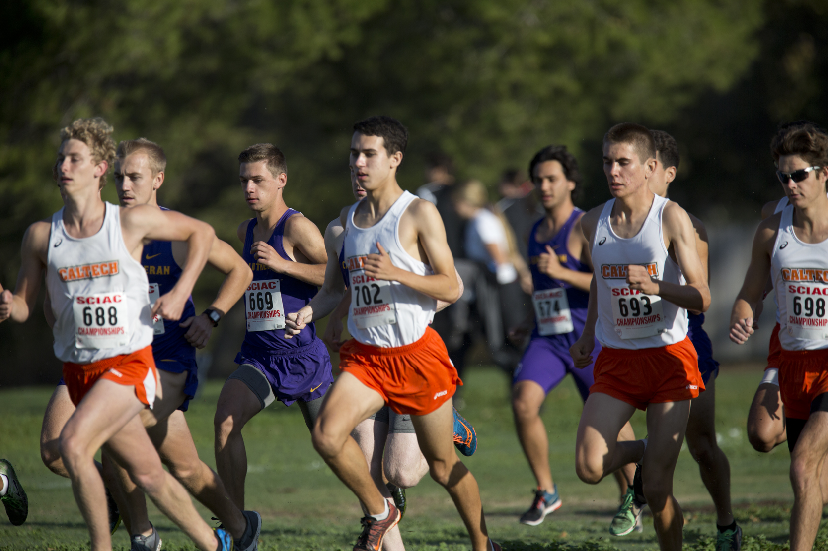 Men's Cross Country Ranked Sixth in Regional Poll