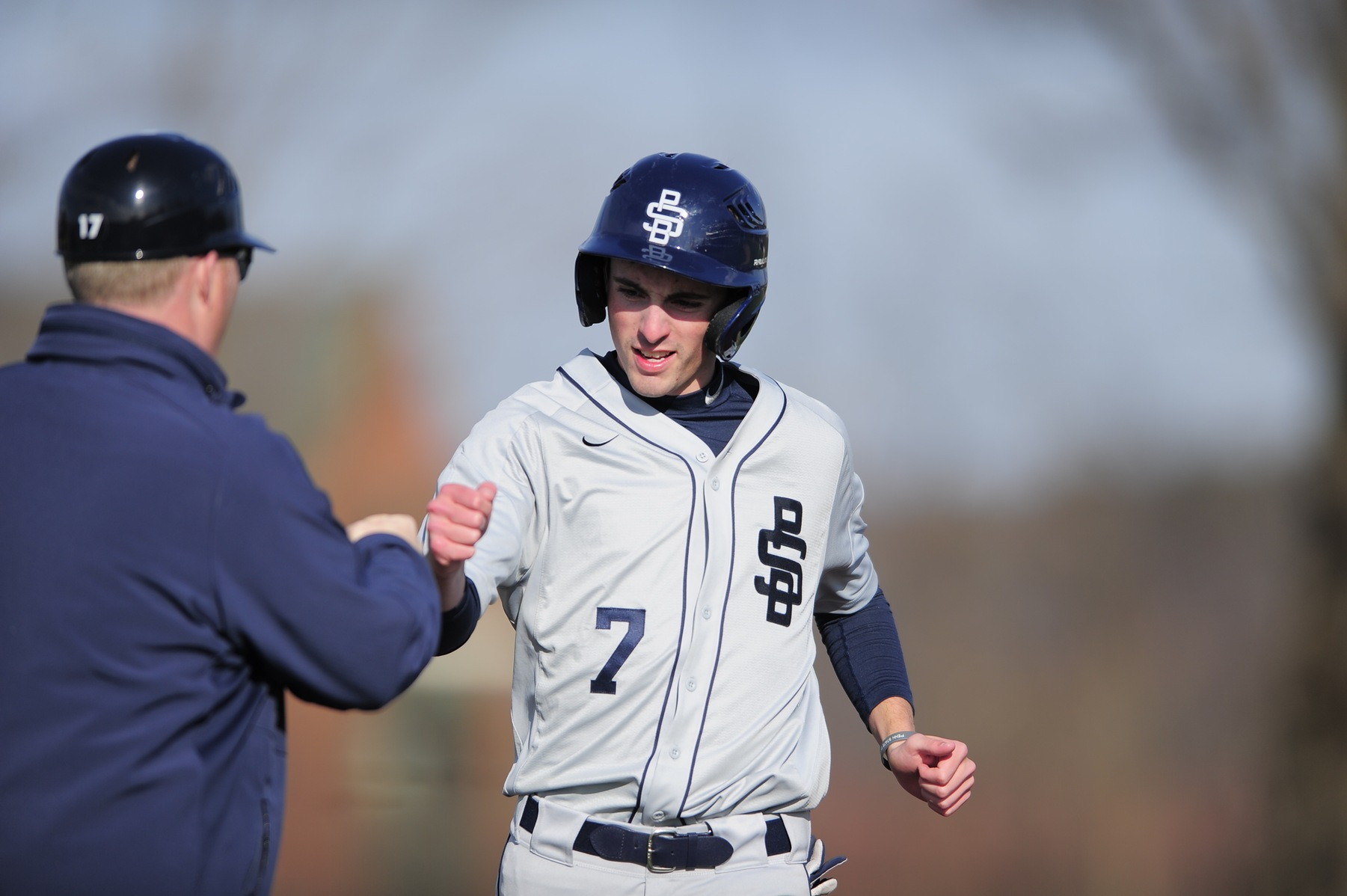 Behrend To Host Mercyhurst in a Doubleheader
