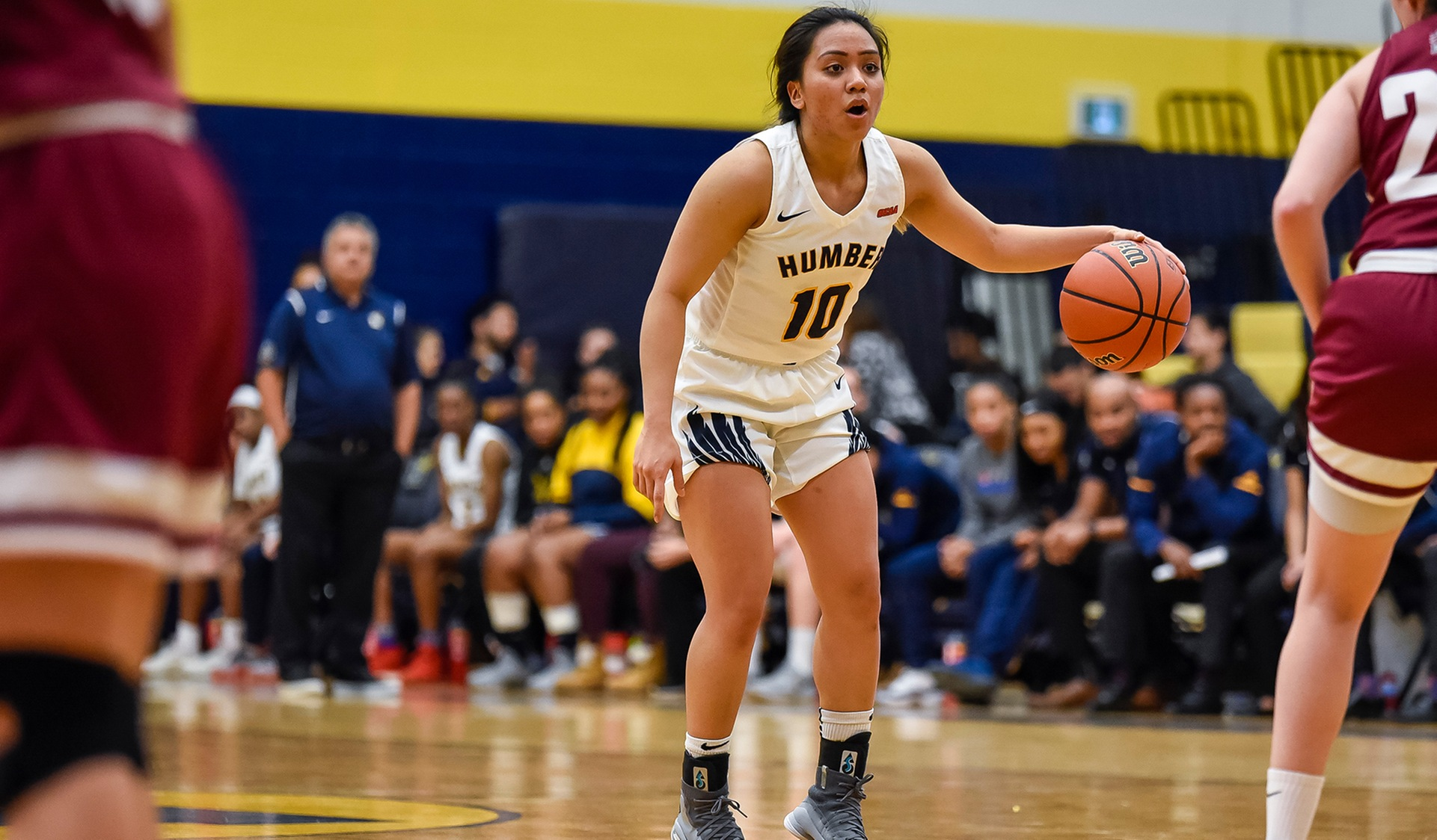 No. 11 WOMEN'S BASKETBALL HITS THE ROAD FOR SAULT